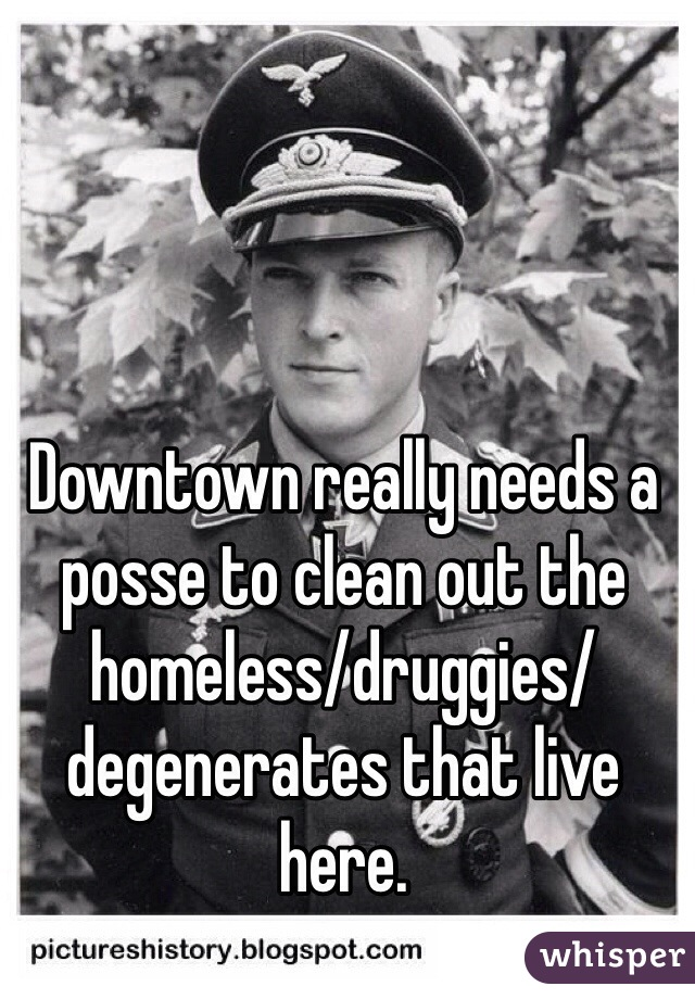 Downtown really needs a posse to clean out the homeless/druggies/degenerates that live here.