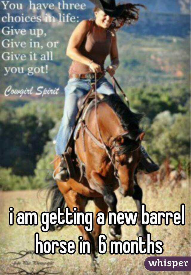 i am getting a new barrel horse in  6 months