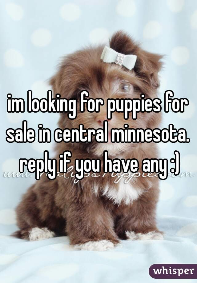 im looking for puppies for sale in central minnesota.  reply if you have any :)