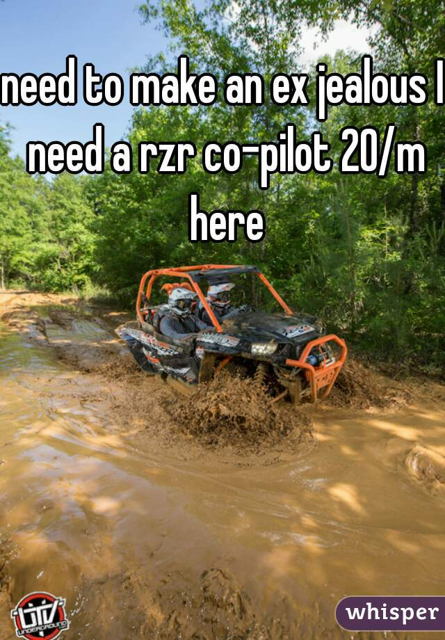 need to make an ex jealous I need a rzr co-pilot 20/m here
