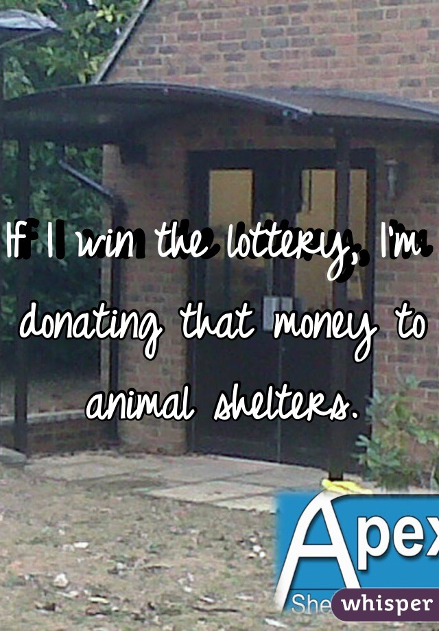 If I win the lottery, I'm donating that money to animal shelters.