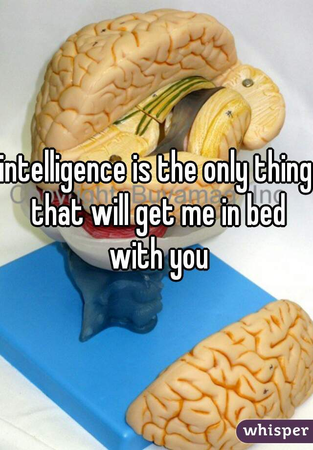 intelligence is the only thing that will get me in bed with you