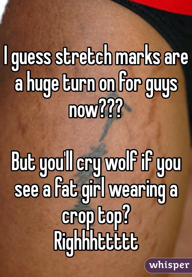 I guess stretch marks are a huge turn on for guys now???  But you'll cry wolf if you see a fat girl wearing a crop top?  Righhhttttt