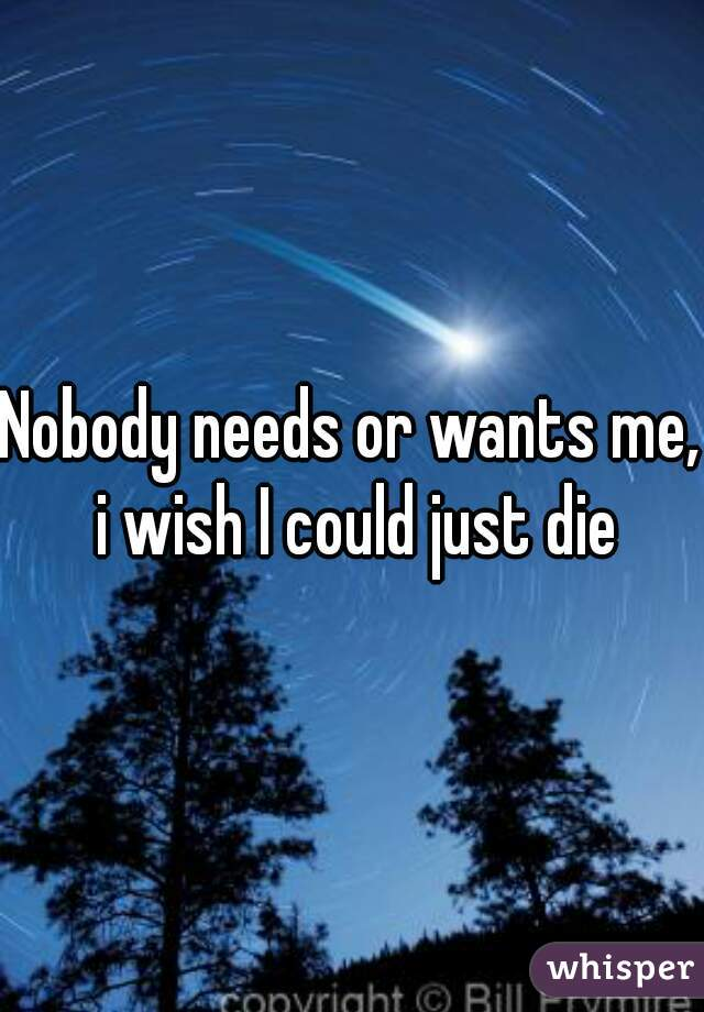 Nobody needs or wants me, i wish I could just die