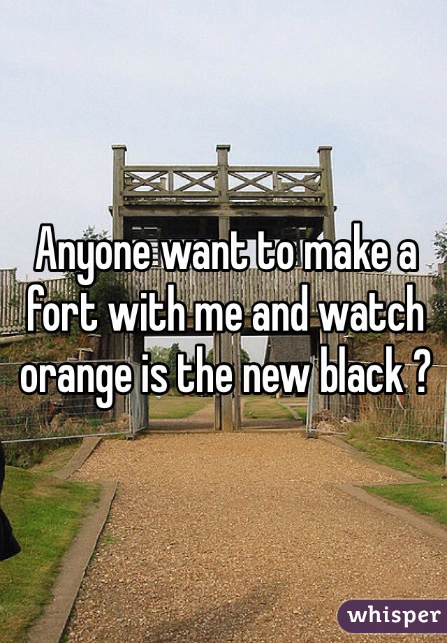 Anyone want to make a fort with me and watch orange is the new black ?