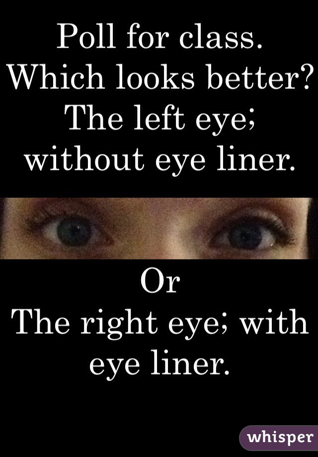 Poll for class.  Which looks better? The left eye; without eye liner.    Or The right eye; with eye liner.