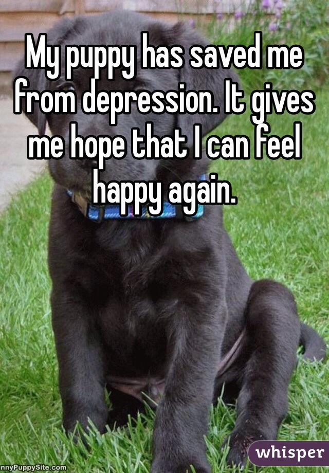 My puppy has saved me from depression. It gives me hope that I can feel happy again.