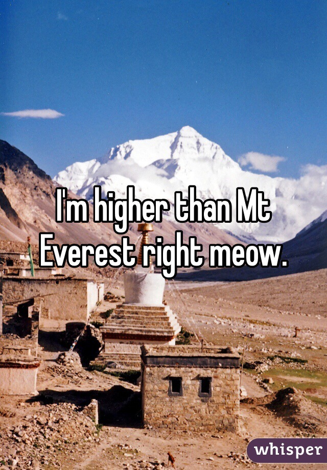 I'm higher than Mt Everest right meow.