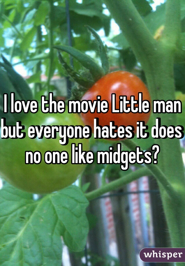 I love the movie Little man but everyone hates it does no one like midgets?