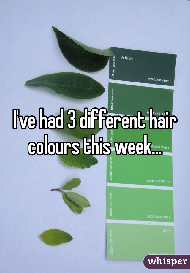 I've had 3 different hair colours this week...
