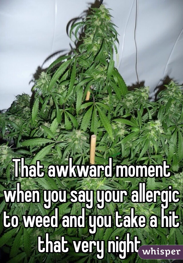 That awkward moment when you say your allergic to weed and you take a hit that very night.