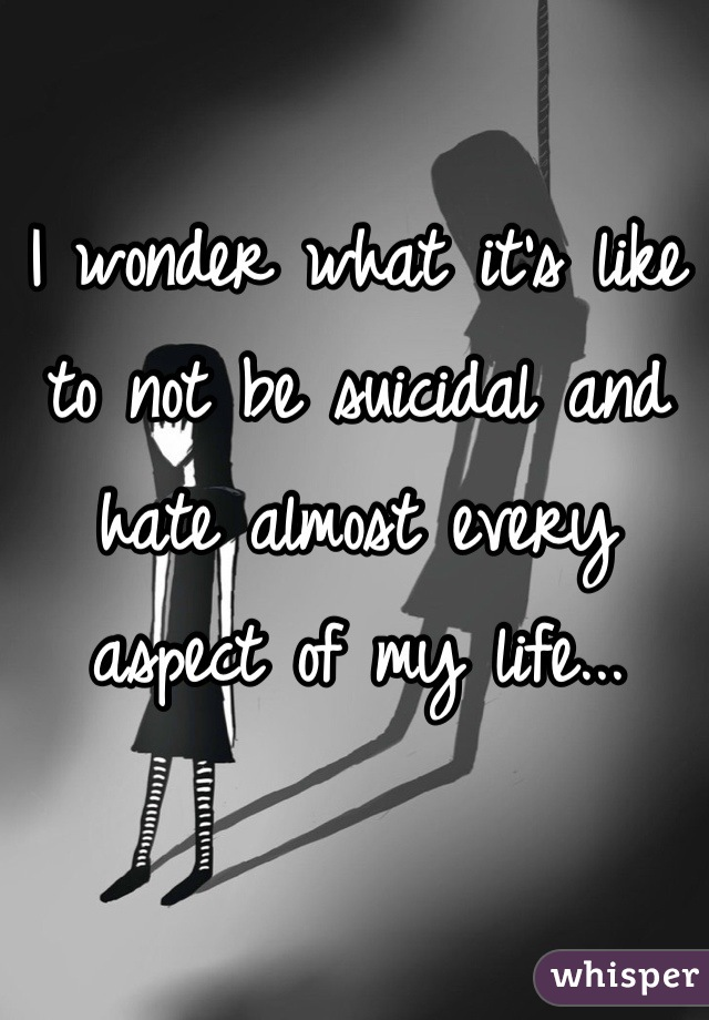 I wonder what it's like to not be suicidal and hate almost every aspect of my life...