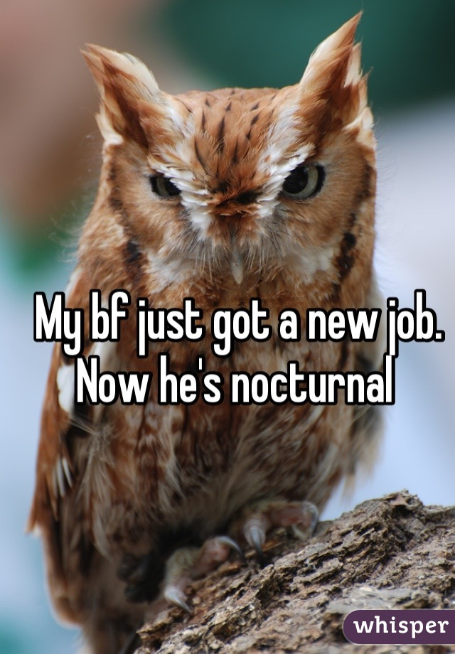 My bf just got a new job.  Now he's nocturnal