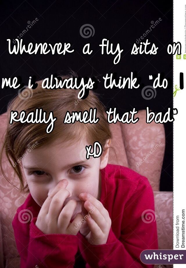 """Whenever a fly sits on me i always think """"do I really smell that bad"""" xD"""