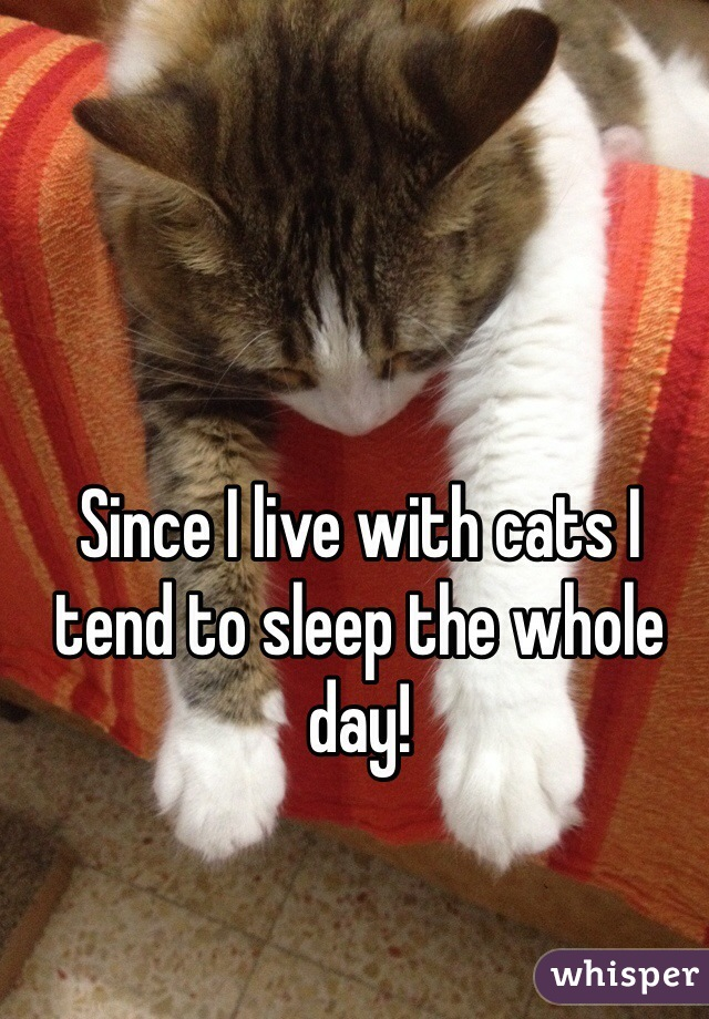 Since I live with cats I tend to sleep the whole day!