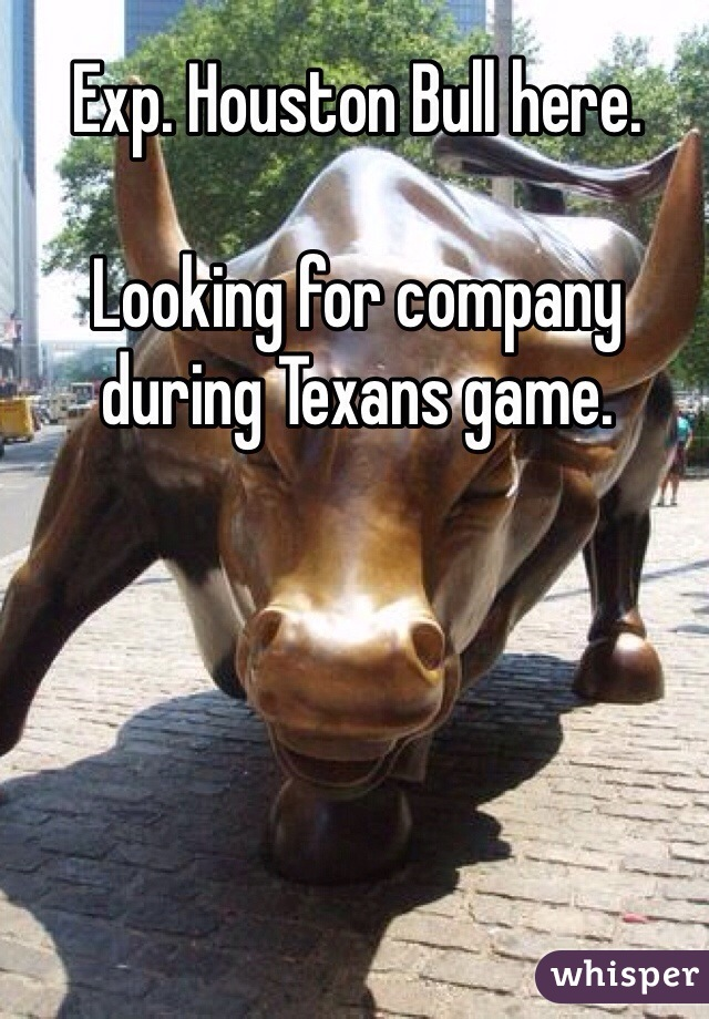 Exp. Houston Bull here.   Looking for company during Texans game.