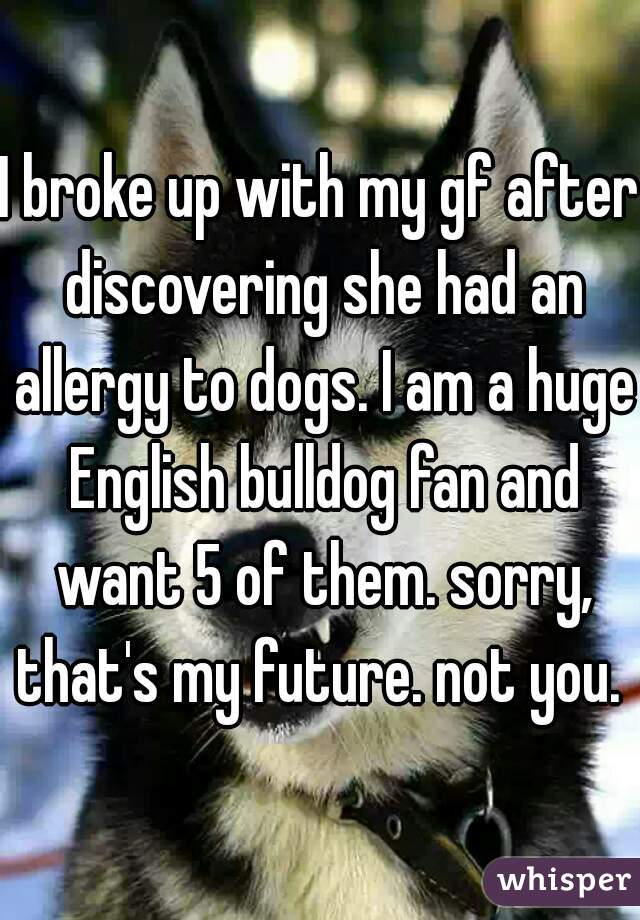 I broke up with my gf after discovering she had an allergy to dogs. I am a huge English bulldog fan and want 5 of them. sorry, that's my future. not you.