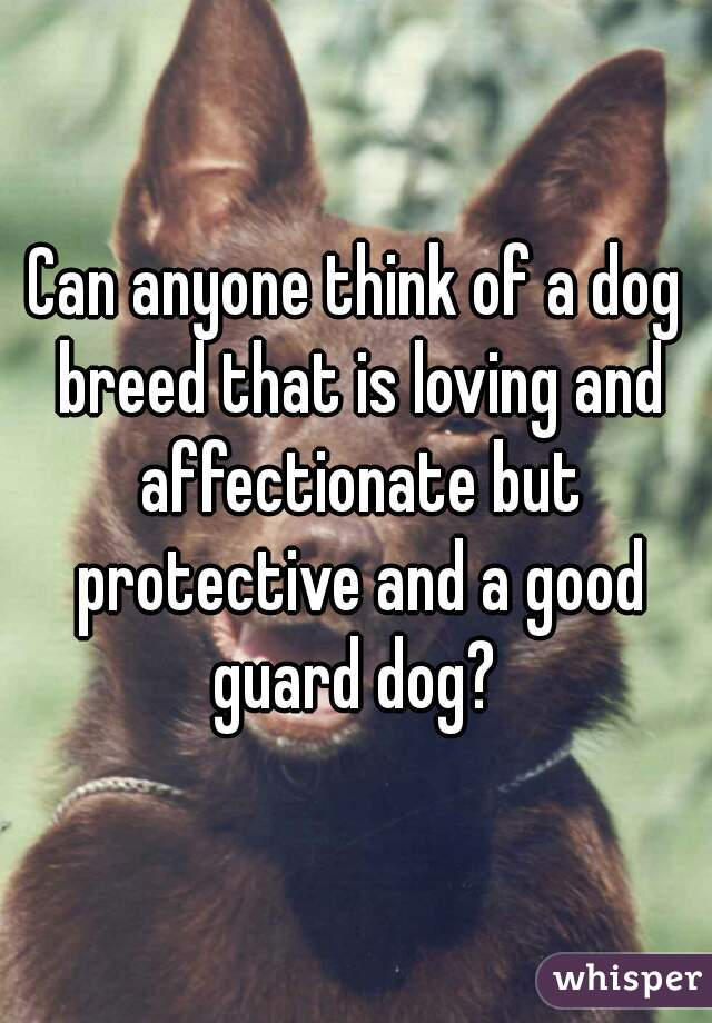 Can anyone think of a dog breed that is loving and affectionate but protective and a good guard dog?
