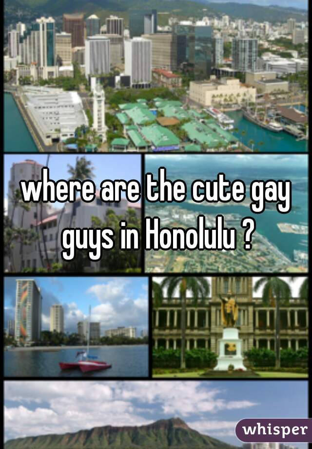 where are the cute gay guys in Honolulu ?