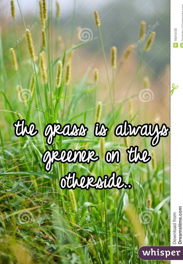 the grass is always greener on the otherside..
