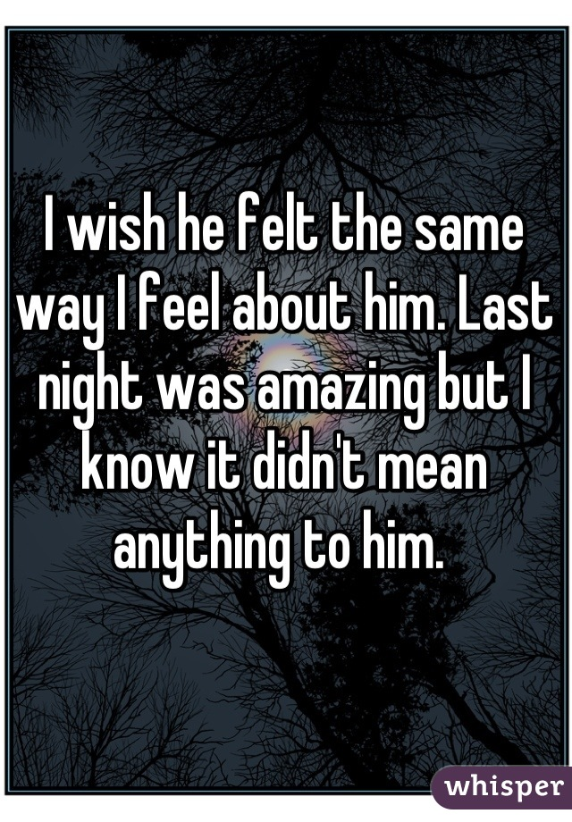 I wish he felt the same way I feel about him. Last night was amazing but I know it didn't mean anything to him.