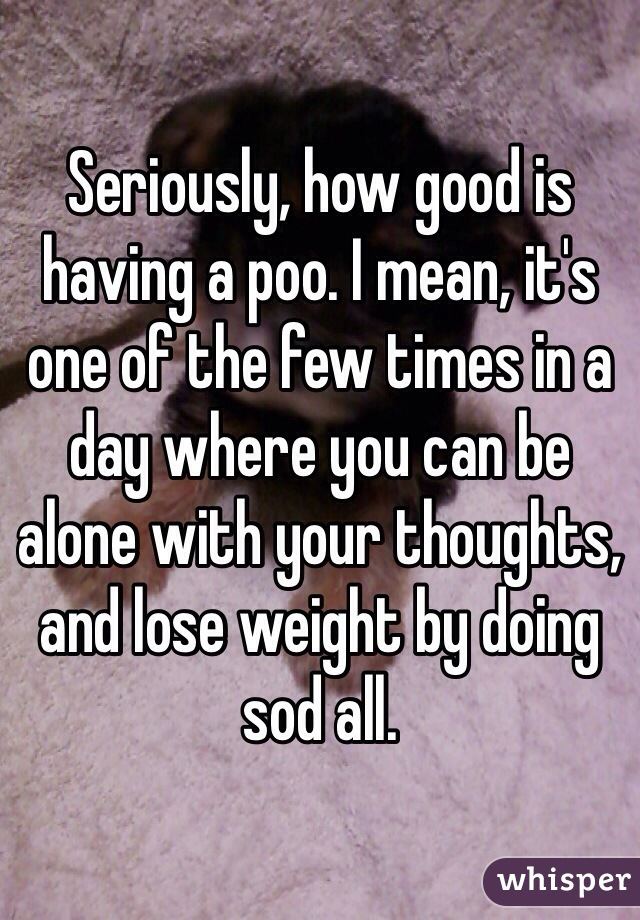 Seriously, how good is having a poo. I mean, it's one of the few times in a day where you can be alone with your thoughts, and lose weight by doing sod all.