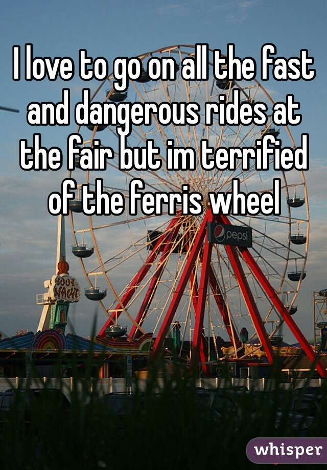 I love to go on all the fast and dangerous rides at the fair but im terrified of the ferris wheel