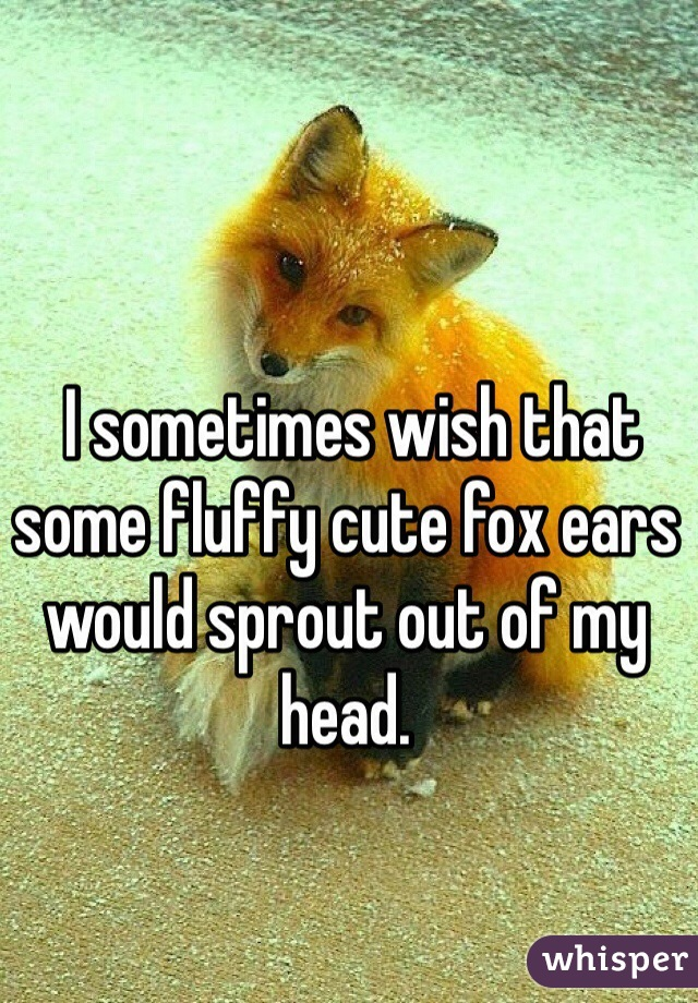 I sometimes wish that some fluffy cute fox ears would sprout out of my head.