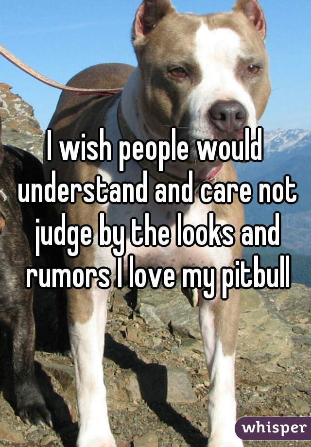 I wish people would understand and care not judge by the looks and rumors I love my pitbull
