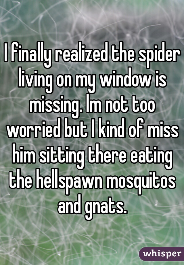 I finally realized the spider living on my window is missing. Im not too worried but I kind of miss him sitting there eating the hellspawn mosquitos and gnats.