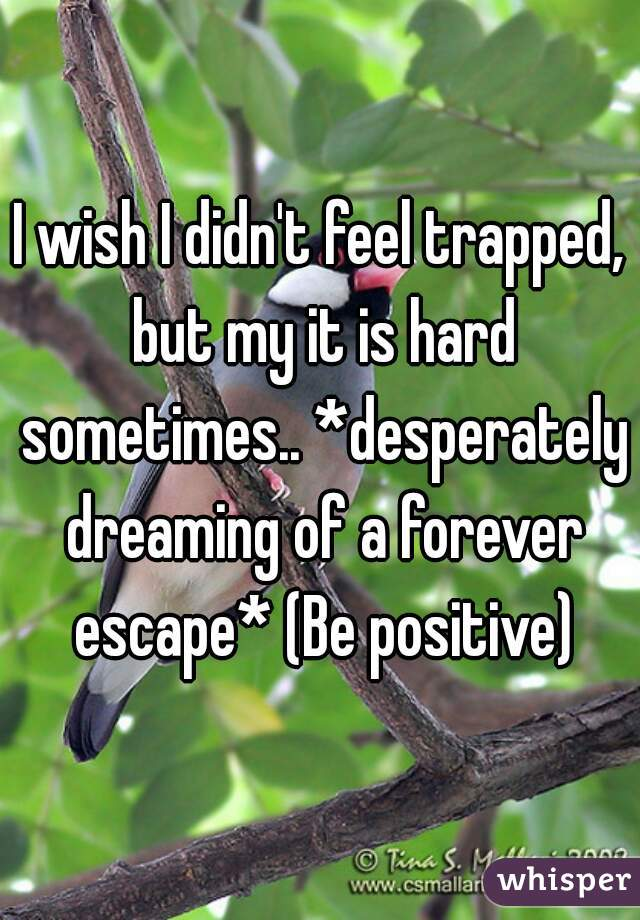 I wish I didn't feel trapped, but my it is hard sometimes.. *desperately dreaming of a forever escape* (Be positive)