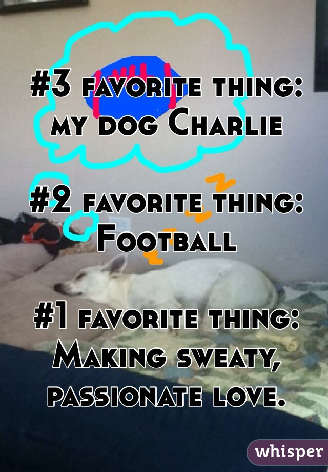 #3 favorite thing: my dog Charlie  #2 favorite thing: Football  #1 favorite thing: Making sweaty, passionate love.