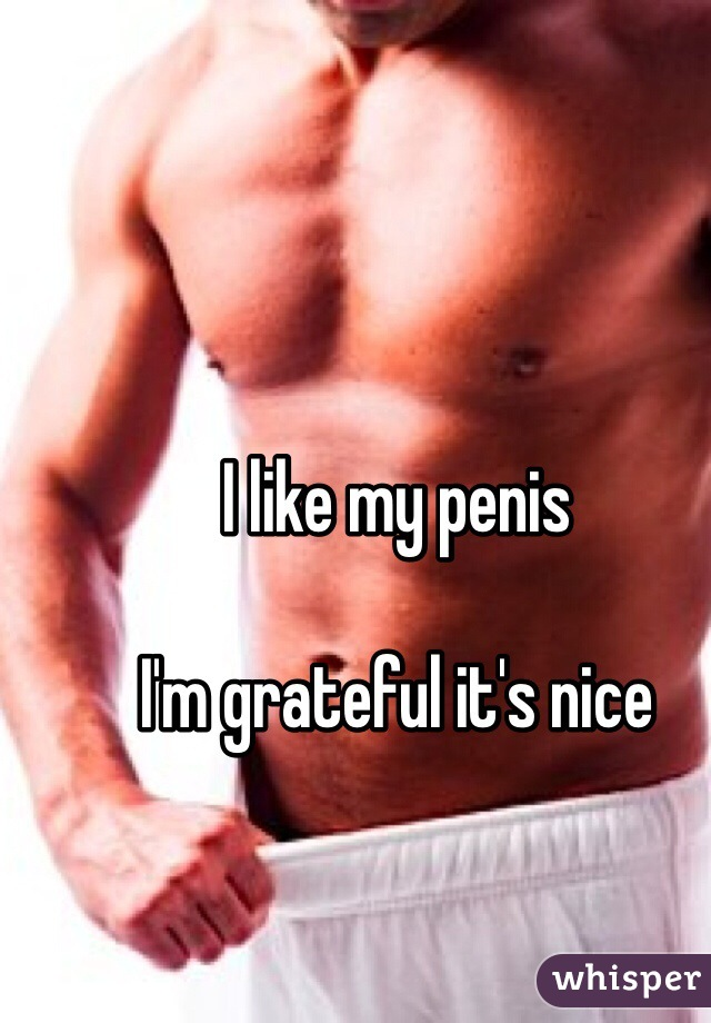 I like my penis  I'm grateful it's nice