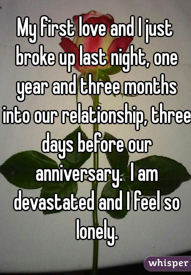 My first love and I just broke up last night, one year and three months into our relationship, three days before our anniversary.  I am devastated and I feel so lonely.