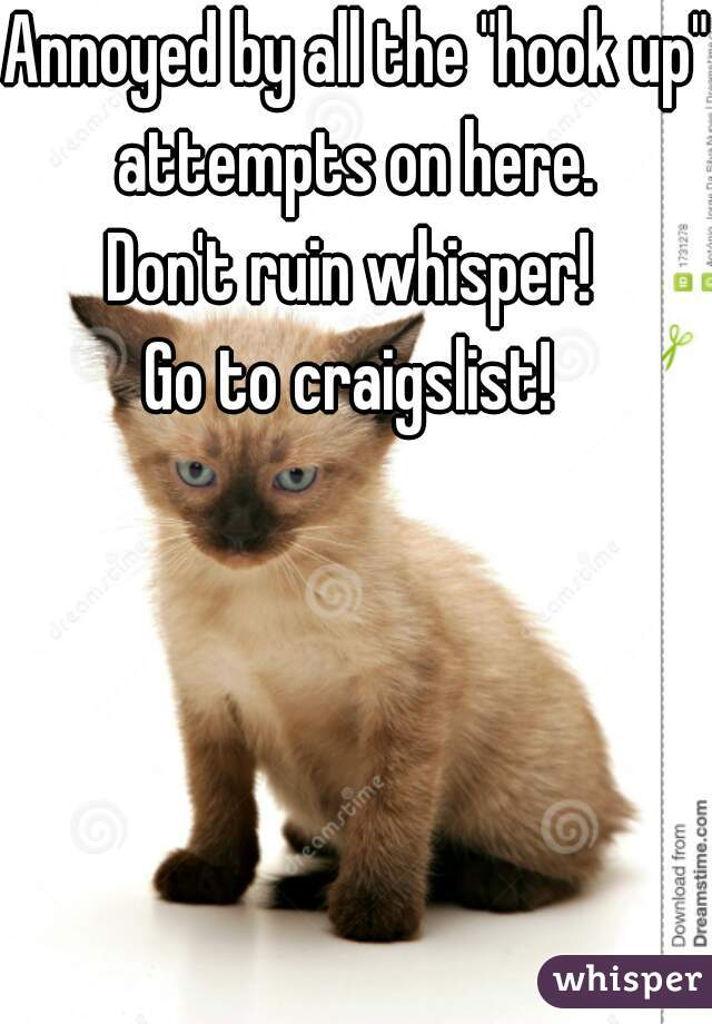 """Annoyed by all the """"hook up"""" attempts on here.  Don't ruin whisper!  Go to craigslist!"""