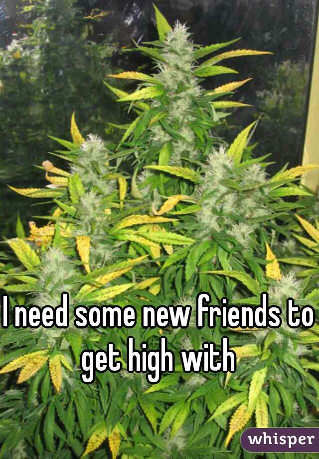 I need some new friends to get high with