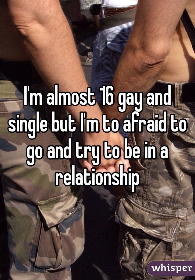 I'm almost 16 gay and single but I'm to afraid to go and try to be in a relationship