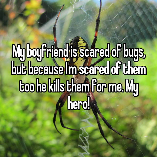 My boyfriend is scared of bugs, but because I'm scared of them too he kills them for me. My hero!