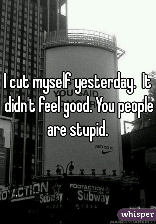 I cut myself yesterday.  It didn't feel good. You people are stupid.