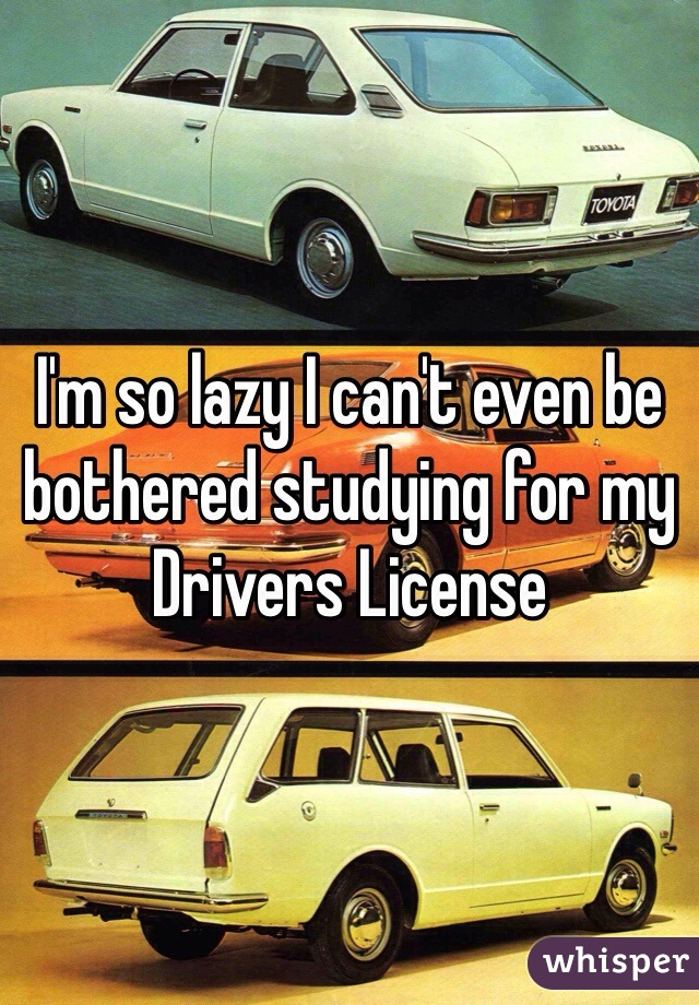 I'm so lazy I can't even be bothered studying for my Drivers License