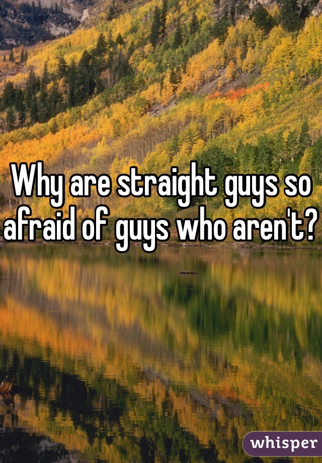 Why are straight guys so afraid of guys who aren't?
