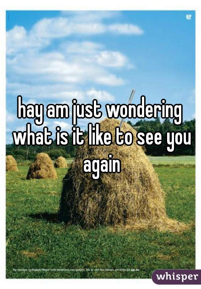 hay am just wondering what is it like to see you again