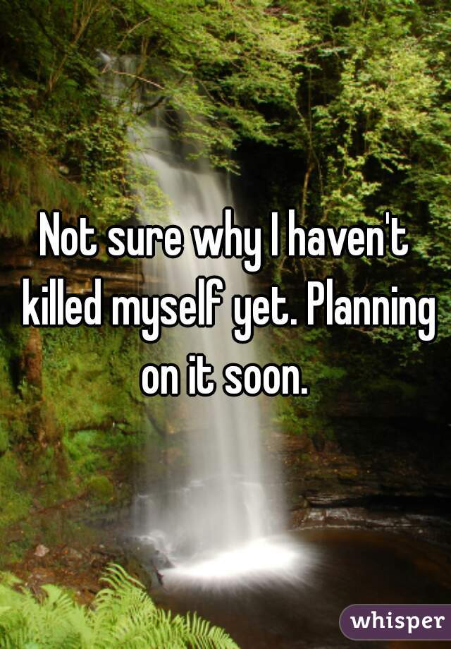 Not sure why I haven't killed myself yet. Planning on it soon.