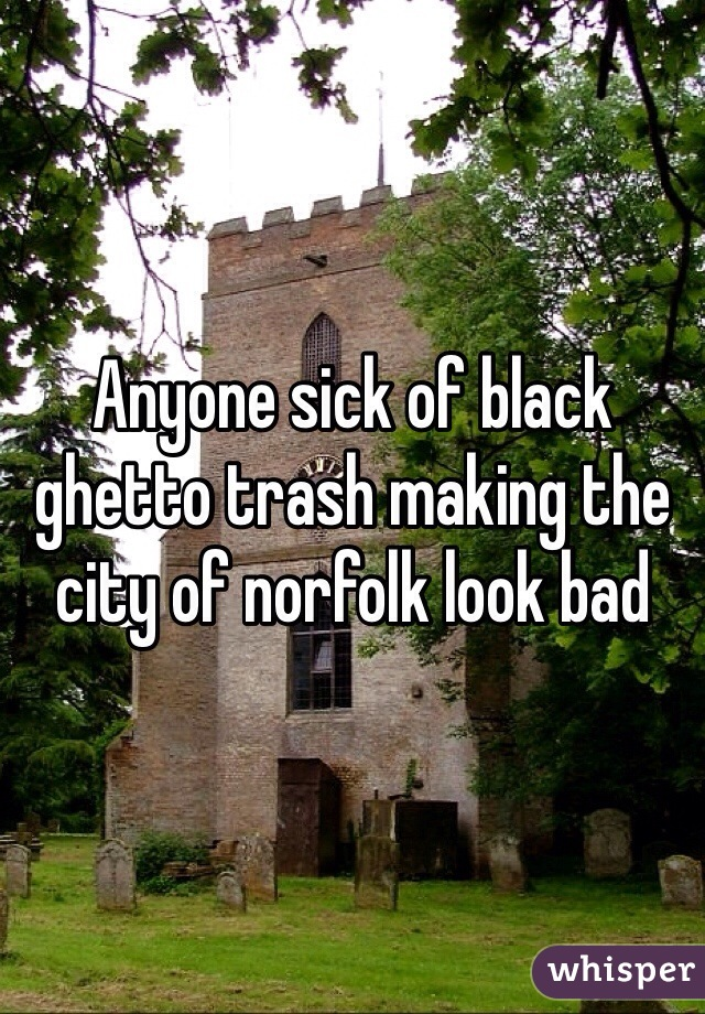 Anyone sick of black ghetto trash making the city of norfolk look bad