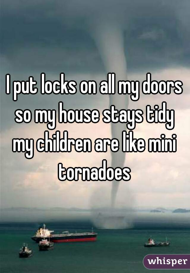 I put locks on all my doors so my house stays tidy  my children are like mini tornadoes