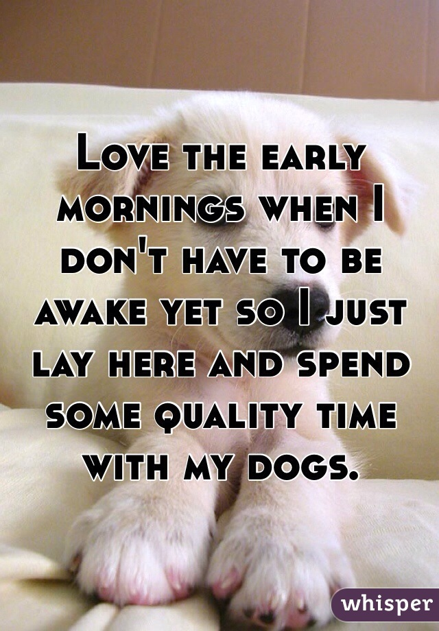 Love the early mornings when I don't have to be awake yet so I just lay here and spend some quality time with my dogs.