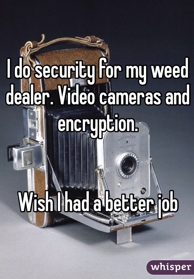 I do security for my weed dealer. Video cameras and encryption.    Wish I had a better job