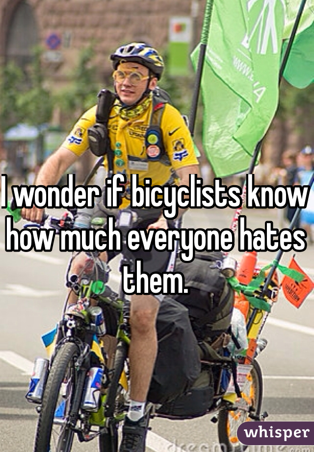 I wonder if bicyclists know how much everyone hates them.