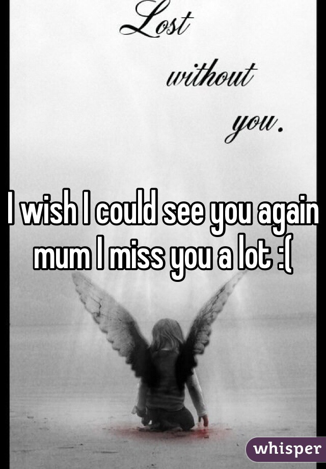I wish I could see you again mum I miss you a lot :(