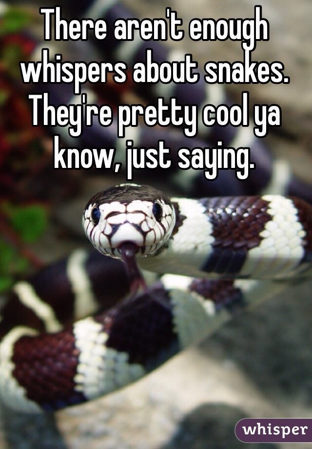 There aren't enough whispers about snakes. They're pretty cool ya know, just saying.